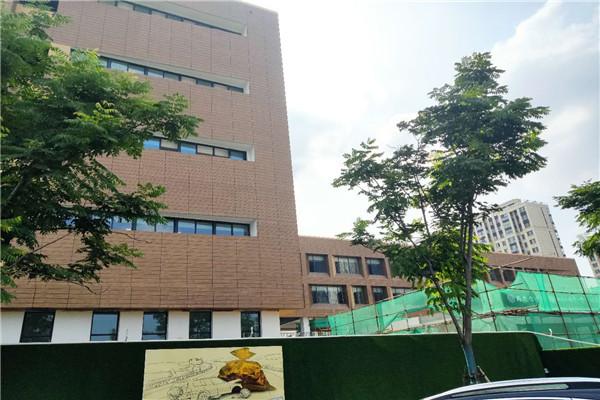 南京江宁区南站小学外墙木纹漆项目施工